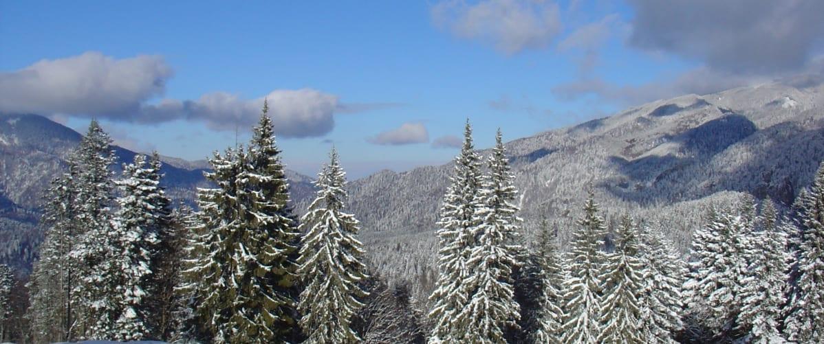 western white mountains snow