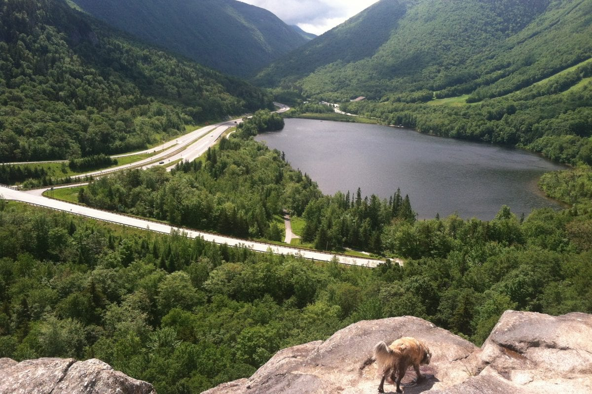 artist bluff franconia notch
