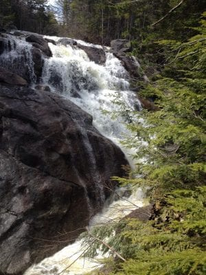 harvard falls