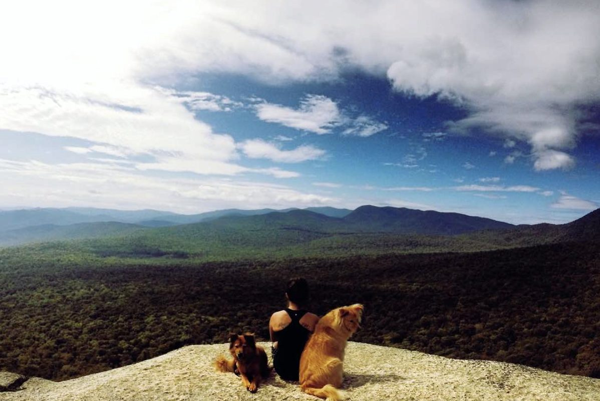 Pet-Friendly Travel in the Western White Mountains